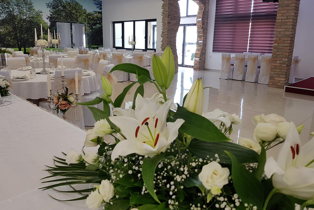 Luksuzna sala za proslave Agropapuk